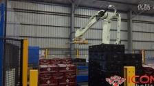 码垛机器人生产线案例