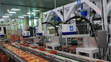 全机器人月饼包装线解决方案