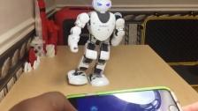 人形机器人学会格斗动作
