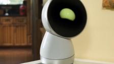 这款机器人都没见过,你就彻底落伍了。