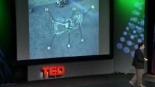 拥有自主意识的机器人更加智能