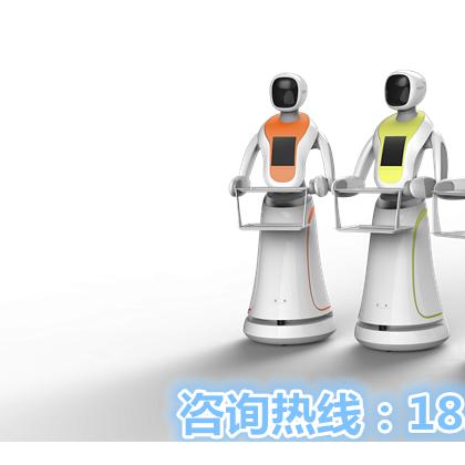 是什么引燃服务机器人市场 ?