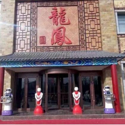 深圳市泰诚机器人