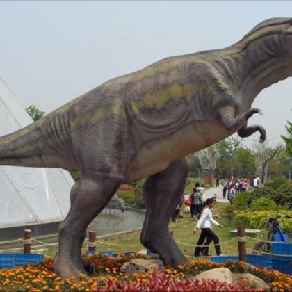 恐龙模型出租,恐龙展览道具出租