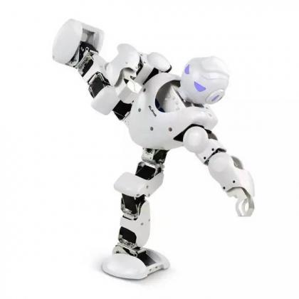 春晚同款跳舞机器人阿尔法