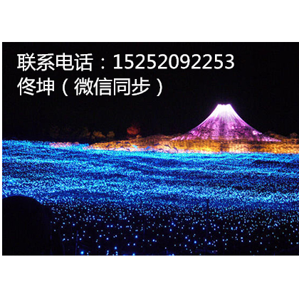 灯光节制作出租出售安装LED造型灯厂家灯光节要投入多少钱