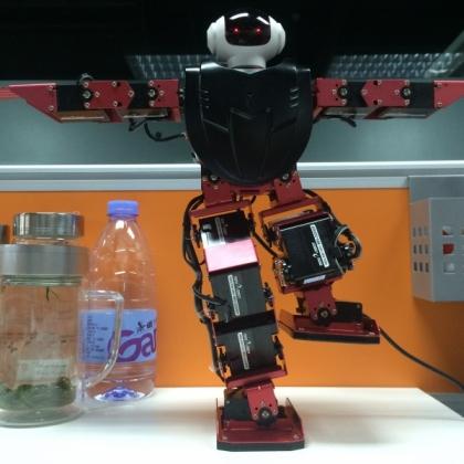 供应MiniRobot 17自由度双足人形舞蹈机器人