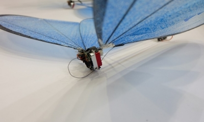 """虽然""""炸机""""了,但仿生蝴蝶和大鸟仍是Festo的最强公关"""