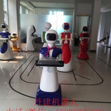 丹建机器人公司,湖南服务机器人,湖北工业机器人