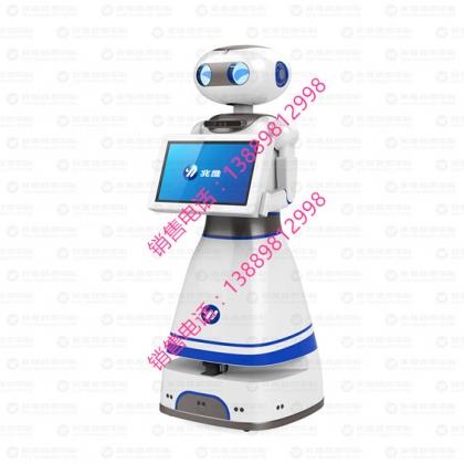 迎宾机器人/导诊机器人/引导服务机器人/银行机器人/展馆机器人