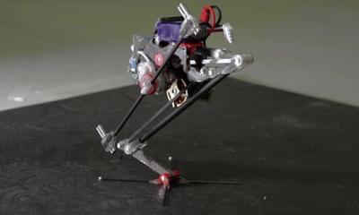 这个小小的机器人外形呆萌 还是跑酷高手