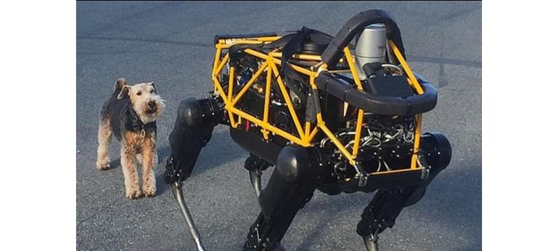还记得谷歌那个踹不倒的机器狗吗?它找了份快递工作