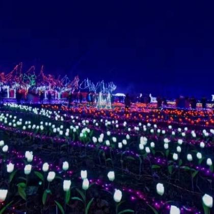 梦幻灯光节出租灯光展设计人气场地设计