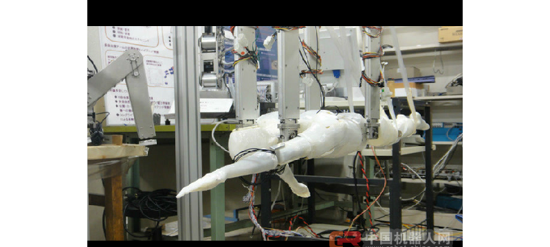 【业界新闻】日本制出可自动游泳机器人 会多种泳姿可助人类