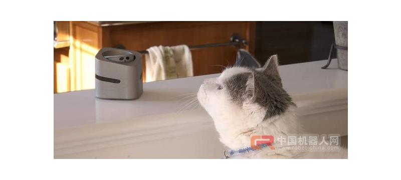 众筹排行榜:会抛媚的机器人,让猫主子乖乖听话!
