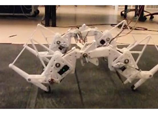 自然界汲取灵感:新型节能机器人模仿猎豹奔跑方式
