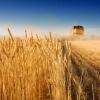 泰山农机博览会抛来千万订单,农业机械采购需求