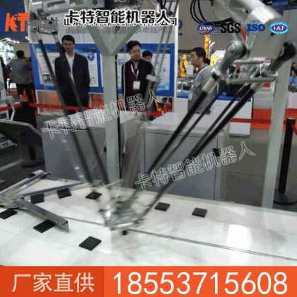六轴并联机器人直销价格
