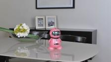 目前早教机器人都有哪些功能?价格是多少