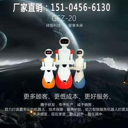 四川省成都市智能餐饮机器人、送餐机器人、迎宾机器人、哈工大技术