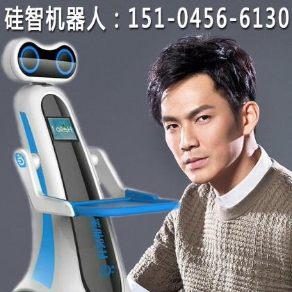 湖北省武汉市智能餐饮机器人、迎宾机器人、送餐机器人、餐厅机器人等、采用哈工大技术