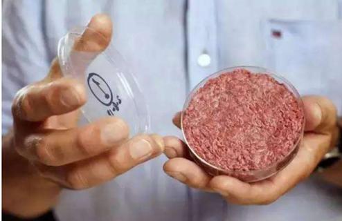 AI能帮我们造出一个无肉的世界吗?