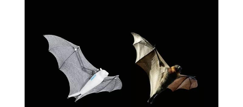 【机器人蝙蝠侠和蜘蛛侠】一个靠机器学习飞,一个折成轮子滚,动作逆天!