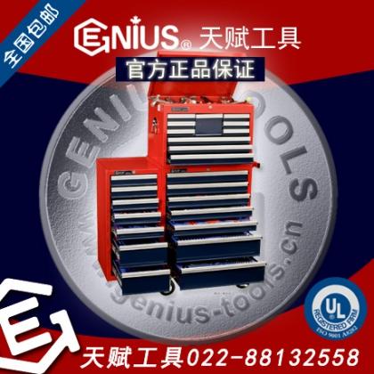 加拿大天赋工具MS-548TS 548件套公制及英制综合工具配工具车Genius 022-88132558