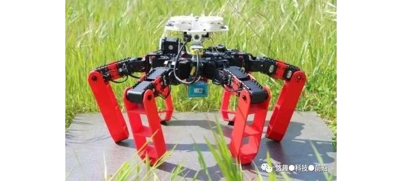 """没有GPS也可自由探索周围环境的""""蚂蚁机器人"""""""