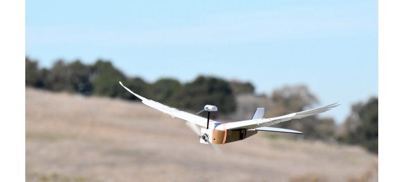 让飞行机器人的飞行离真正的鸟类更进一步