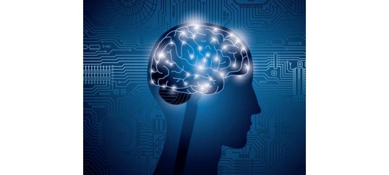 在机器人和自动化世界里,增强流程和体验才能适应未来发展