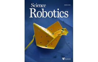 协助手术、探索核泄漏地点!铂金做的微米机器人有点酷