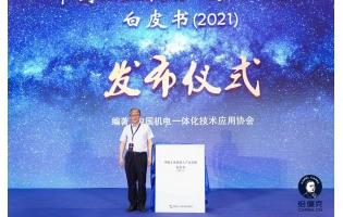 第七届恰佩克奖论坛上杨善林院士说:达芬奇的水平确实很高,但有很多不实用性